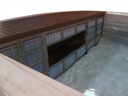 Spa para nadar SWIMSPA AQUATIC 4